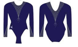 Competition Long Sleeve Leotard